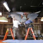 Jordan, Anthony, and Steve install the eagle on the back bar